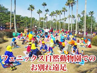 宮崎市フェニックス自然動物園でのお別れ遠足