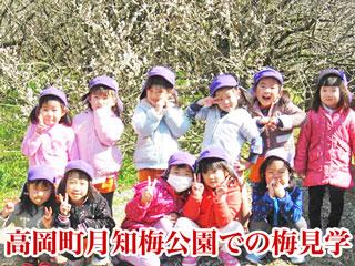 宮崎市高岡町月知梅公園での梅見学