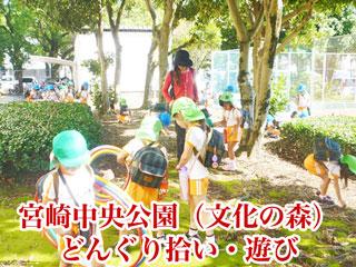 宮崎中央公園(文化の森)でのどんぐり拾い・遊び